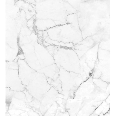 White Marble Shower Panel